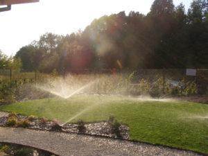Projektowanie systemów nawadniania ogrodów